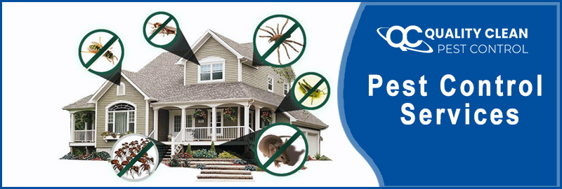 Pest Control French Island